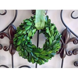 """5"""" Small Preserved Mini Boxwood Wreath with Sheer Green Ribbon for Spring Summer Year Round, Christmas, Wedding, Rustic Farmhouse Home Decor, Door or Mirror Hanger, Green, Extra Full, Handmade"""